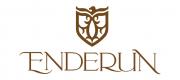 Enderun College